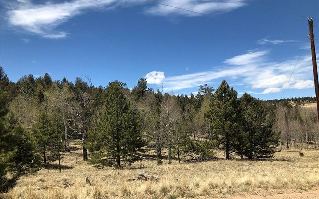 10380 Ranch Road HARTSEL, CO 80449