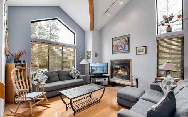 Saw Mill Patch Townhomes 113 - photo 1