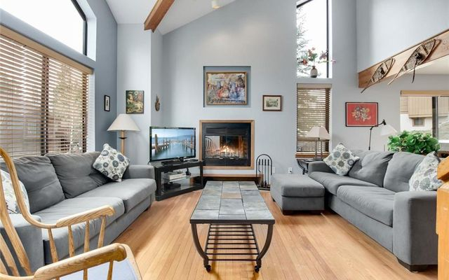Saw Mill Patch Townhomes 113 - photo 5