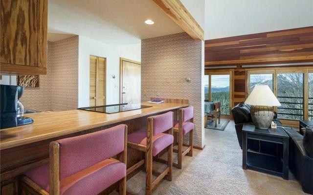 Timber Ridge Condo 327 - photo 5