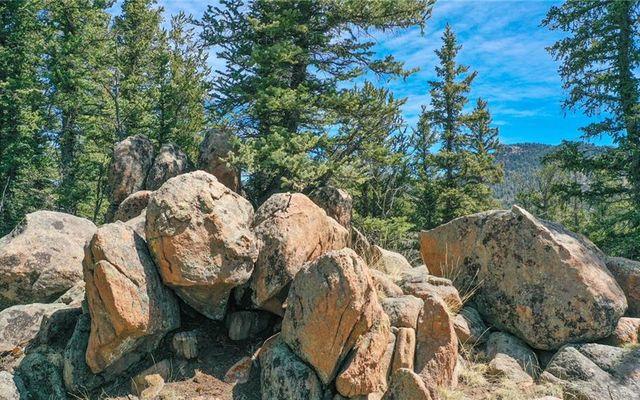 367 Swallow Rock Trail COMO, CO 80432