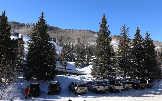 Manor Vail C-233 - photo 14