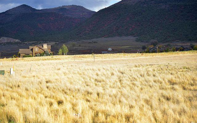117 Tallgrass - photo 4