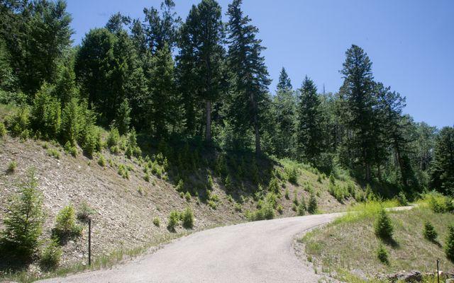 92 Sunquist Road - photo 5