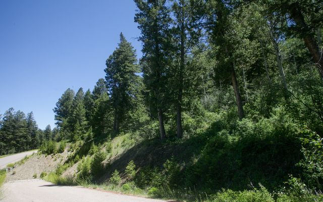 92 Sunquist Road - photo 7
