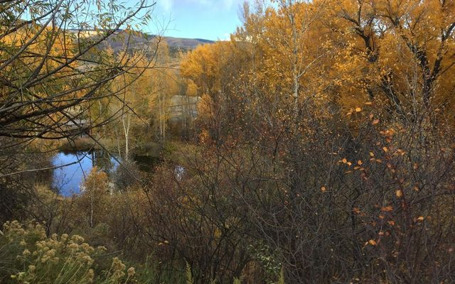 242 Brett Trail - photo 10