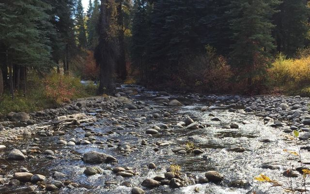 242 Brett Trail - photo 5