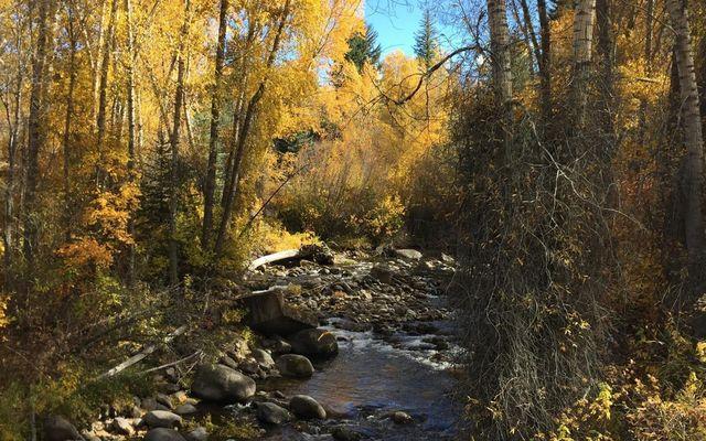 242 Brett Trail - photo 7