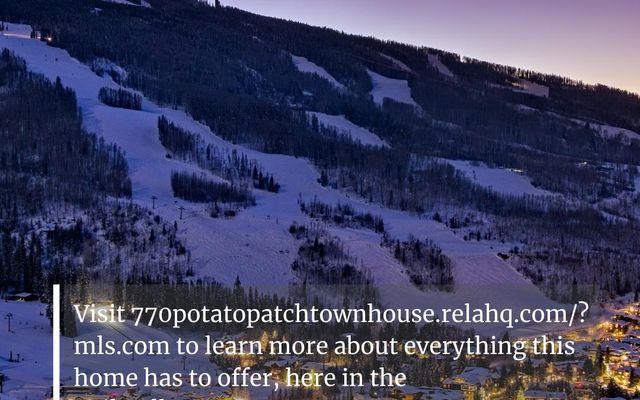 Potato Patchth C - photo 31