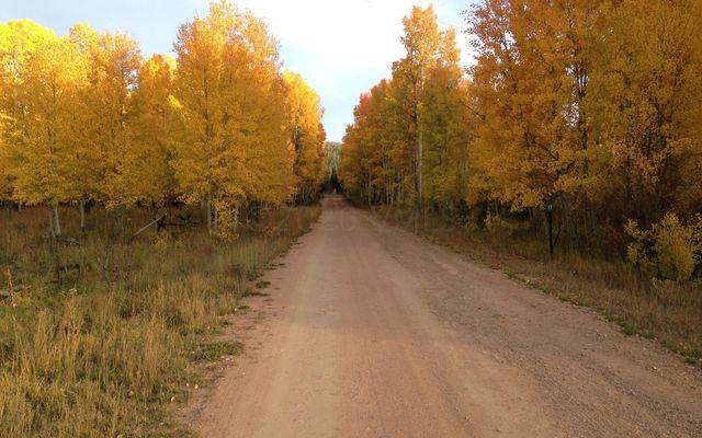 14620 County Road 16 - photo 30