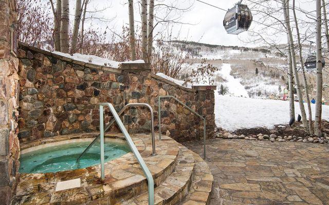 Mccoy Peak Lodge r02 - photo 18
