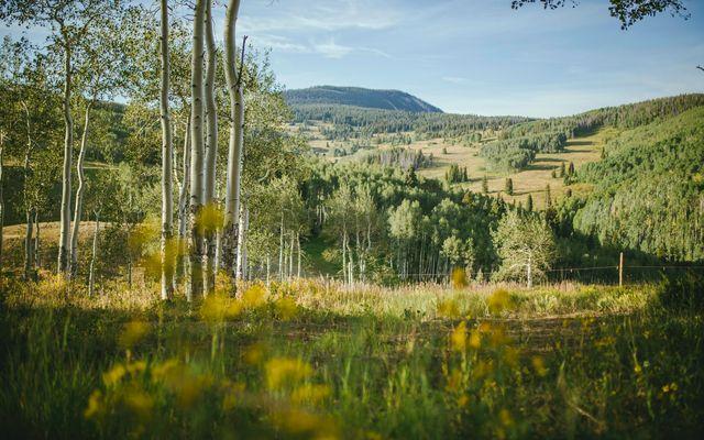 Beaver Creek Meadows b4 - photo 33