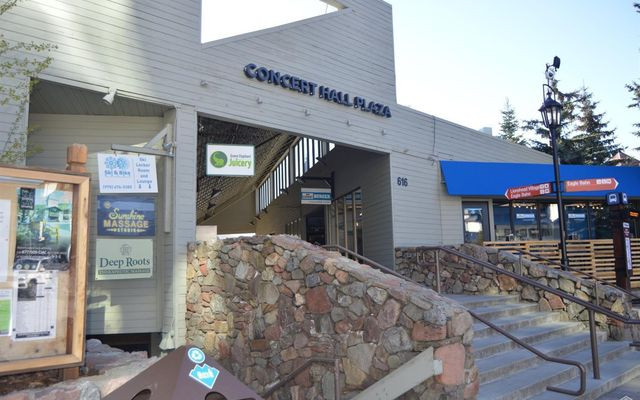 616 Lionshead Circle 300-C - photo 2