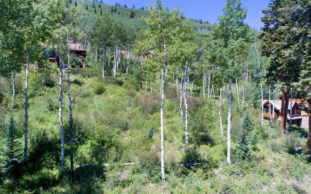 514 Forest Trail Edwards, CO 81632