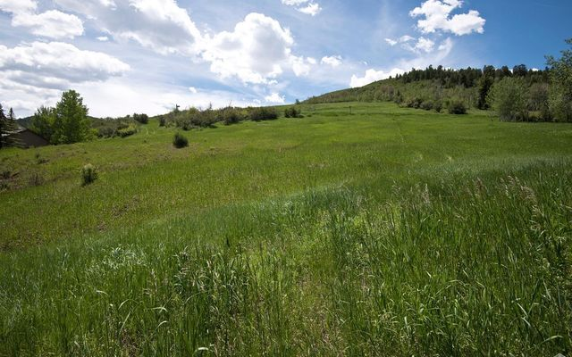 875 Bachelor Gulch Road - photo 5
