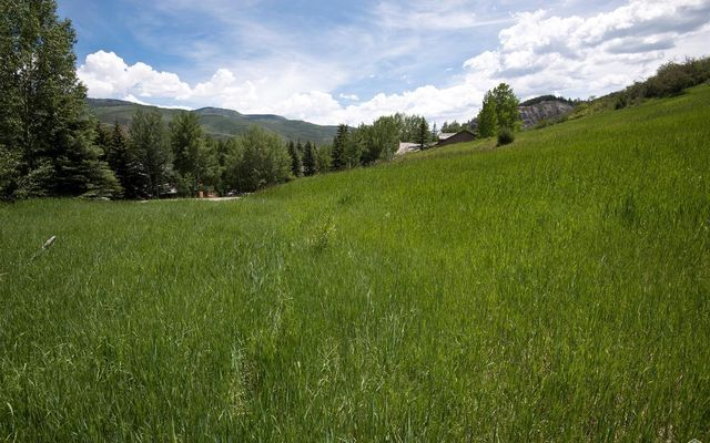 875 Bachelor Gulch Road - photo 6