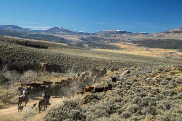 Nottingham Ranch 1690 Derby Mesa Loop Burns, CO 80426