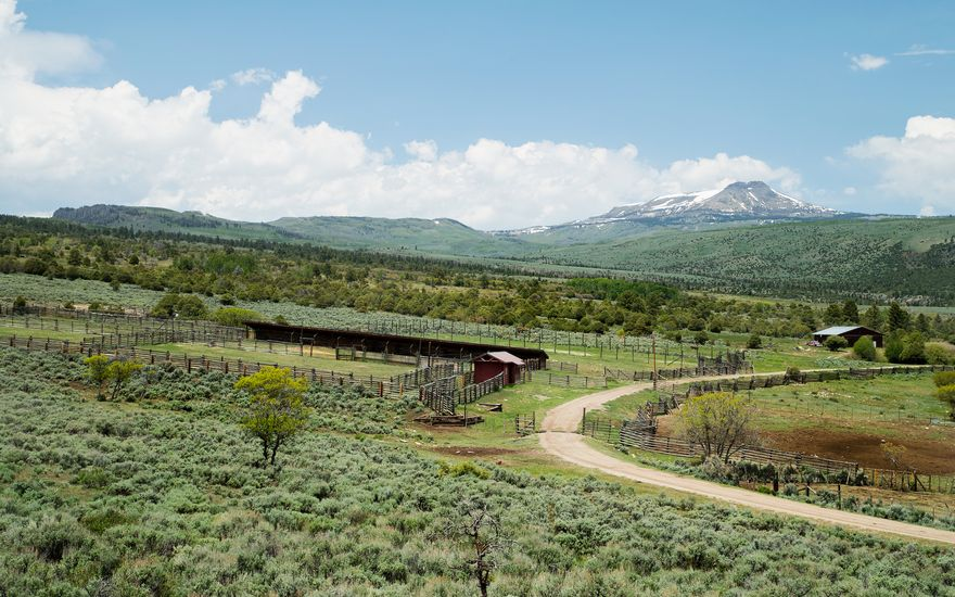 1690 Derby Mesa Loop - photo 13