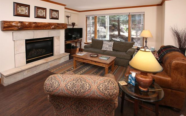 Pinecone Lodge 108 - photo 1