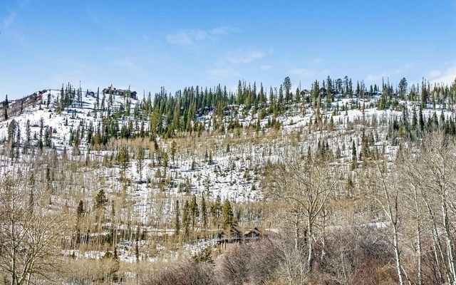 811 Granite Springs - photo 2