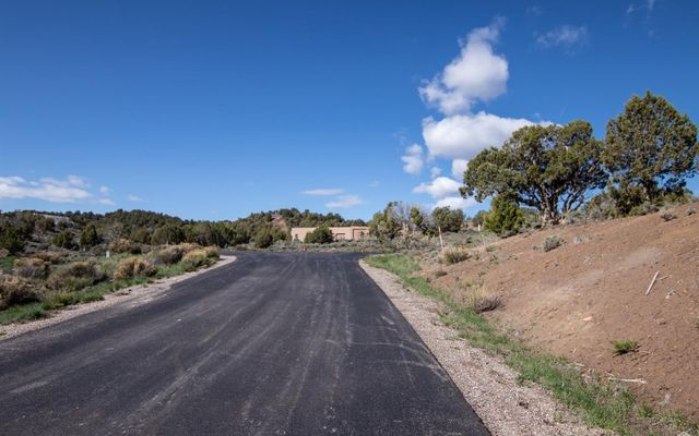 221 Chaparral Ranch Rd. Road - photo 8