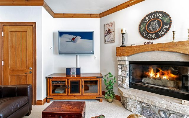 Elkhorn Lodge Condo 205 - photo 3