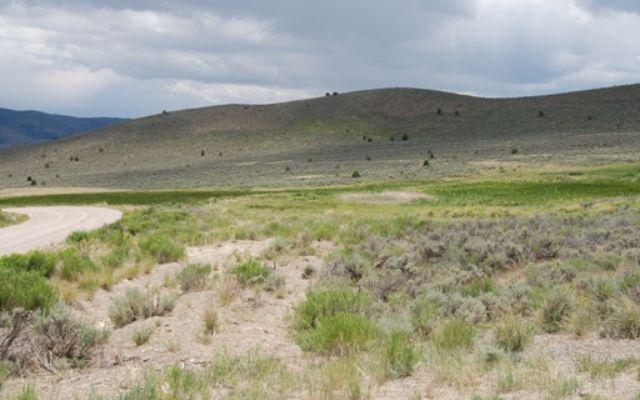 Horse Mountain Ranch - photo 1