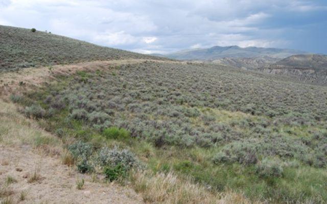 Horse Mountain Ranch - photo 3