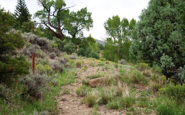 Horse Mountain Ranch - photo 9