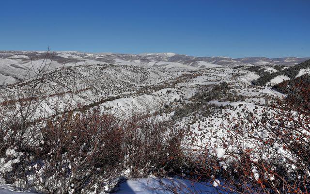 636 Saddle Ridge - photo 12
