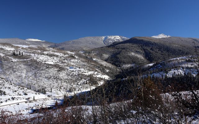 636 Saddle Ridge - photo 17