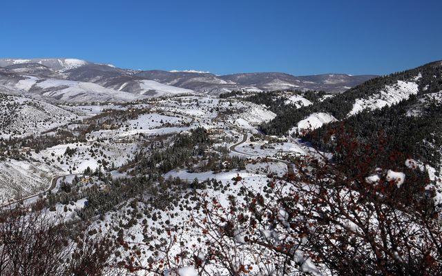 636 Saddle Ridge - photo 18