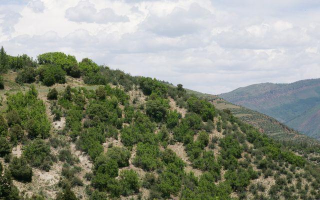 636 Saddle Ridge - photo 4