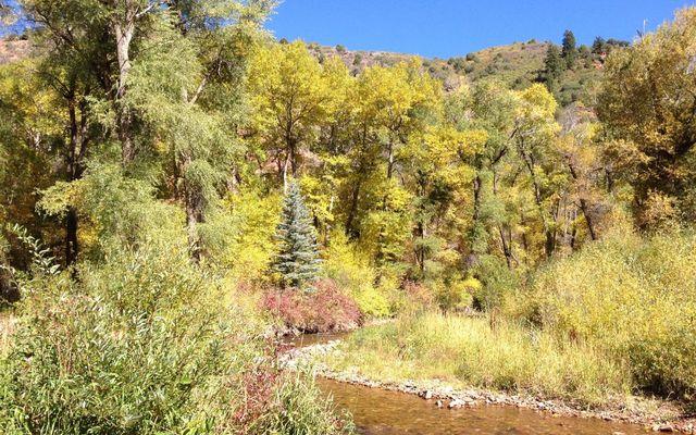 10107 Brush Creek Road - photo 13