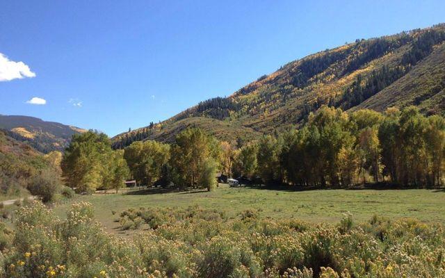 10107 Brush Creek Road - photo 7