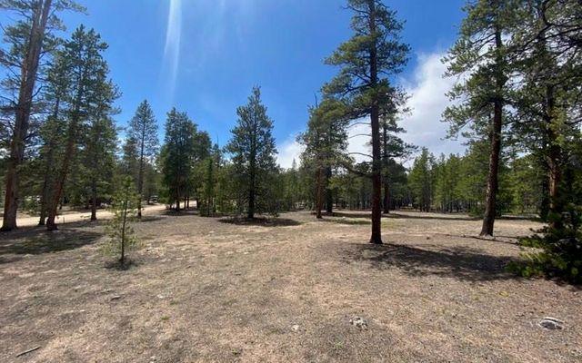 475 Peak View Drive TWIN LAKES, CO 80461