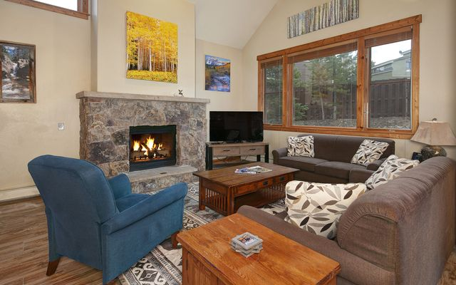 Mountain Thunder Townhomes 803 - photo 2