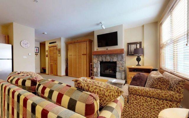 Buffalo Lodge And The Dakota Condos 8337 - photo 13