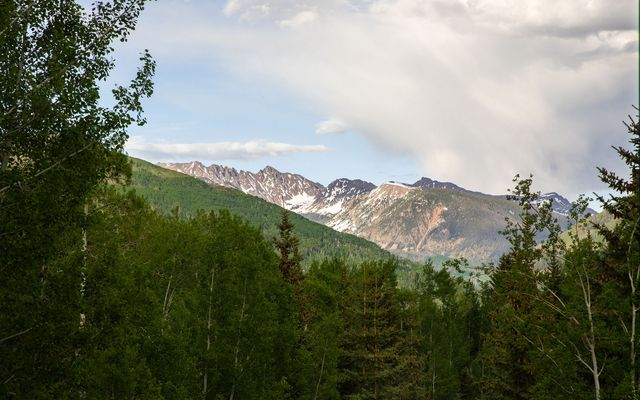 1487 Buffehr Creek Road - photo 30