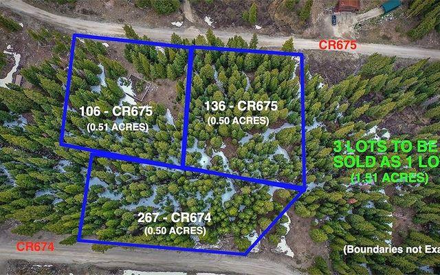 106 CR 675 BRECKENRIDGE, CO 80424
