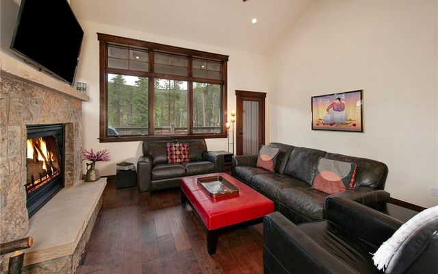 Alders Townhomes 3a - photo 4