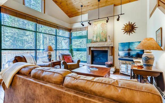 Ski Tip Ranch Condominiums 8724 - photo 2