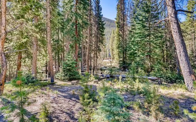 Ski Tip Ranch Condominiums 8724 - photo 25