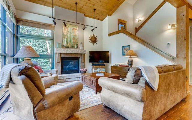 Ski Tip Ranch Condominiums 8724 - photo 3