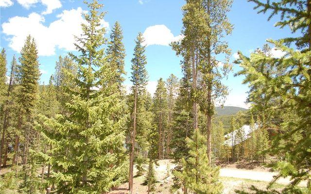 28 Lodestone Trail - photo 11