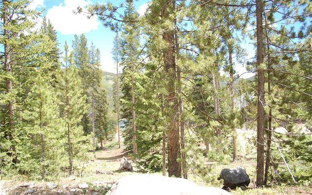28 Lodestone Trail - photo 14