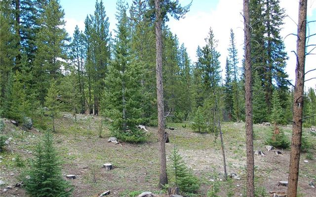 28 Lodestone Trail - photo 3