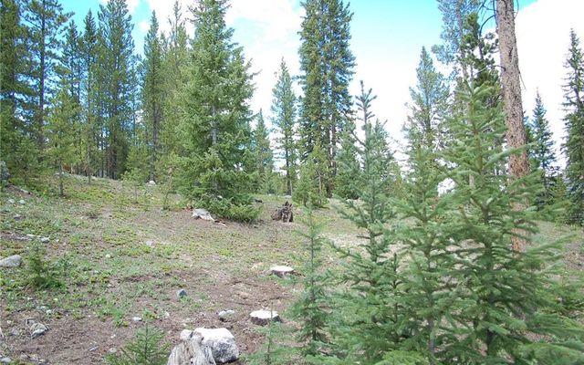 28 Lodestone Trail - photo 4