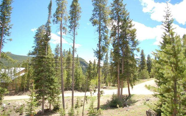 28 Lodestone Trail - photo 5