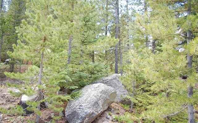 28 Lodestone Trail - photo 6